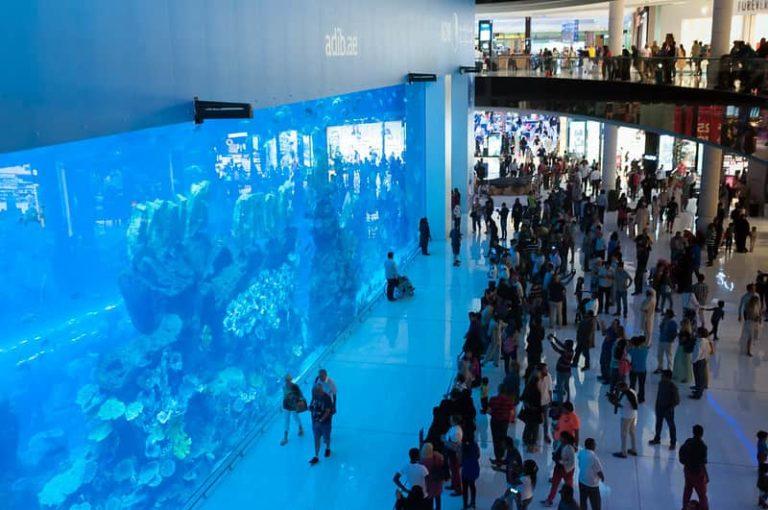 Dubai Aquarium, Dubai - A Top Tourist Destination