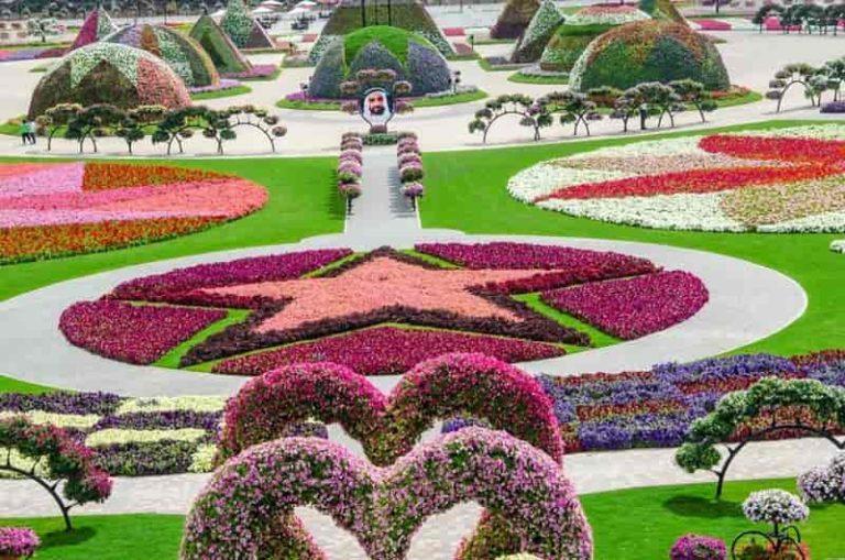 Miracle Garden, Dubai - A Top Tourist Destination