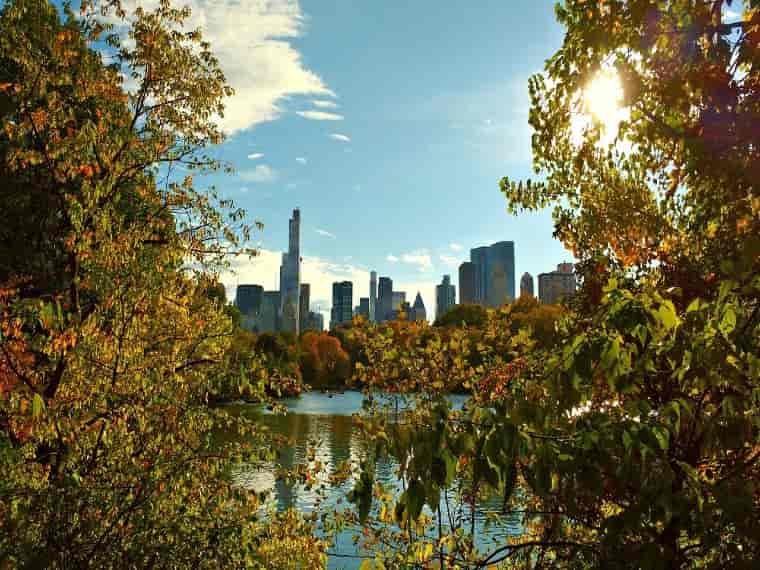 Central Park, Reasons to Visit New York